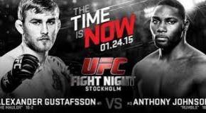 UFC on FOX 14: Gustafsson prieš Johnson, Henderson prieš Mousasi