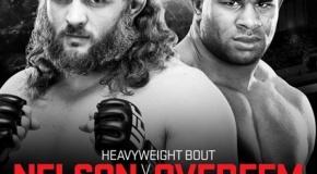 UFC 185: Alistair Overeem prieš Roy Nelson