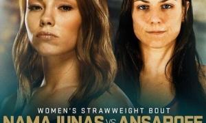 UFC 187 - dar viena priežastis nepraleisti šio šou