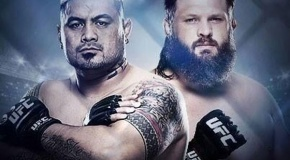 UFC Fight Night 52 belaukiant (video)
