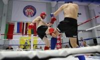 """Sekmadienį pasibaigė didžiausias kikbokso turnyras Lietuvoje - """"Vilnius open 2015"""""""