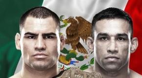 Cain Velasquez prieš Fabricio Werdum UFC 188