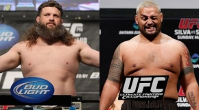 Mark Hunt prieš Roy Nelson: kas ką? (video)