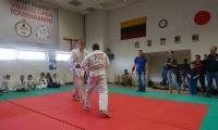 Vilniuje vyko atviras sportinio jiujutsu čempionatas