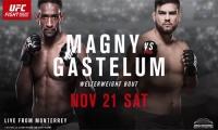 UFC Fight Night 78 svėrimai (video)