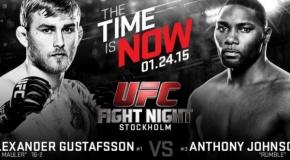UFC kelias į oktagoną: Gustafsson prieš Johnson (video)