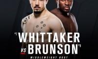 UFC Fight Night 101 rezultatai (video)