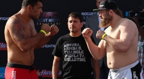 """UFC Fight Night: Nogueira vs Nelson"" rezultatai"
